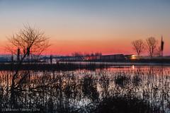 CSX Q279 Near Marion, Ohio at Sunrise (Brandon Townley) Tags: railroad sky sun reflection train sunrise railway trains swamp marsh railfan csx