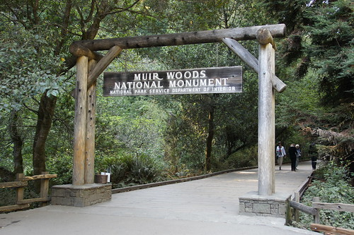 Muir Woods, USA, September 2012