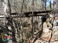 Ruta de los Puentes (Historia de Covaleda) Tags: espaa spain fiesta paisaje douro pinos soria historia pinar tradicion duero covaleda