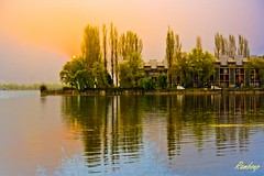 Dal Lake !!! (Rambonp:loves all creatures of this universe.) Tags: blue trees houses red wallpaper sky india white lake mountains reflection green nature water silhouette yellow clouds canon garden landscape paradise bokeh hills valley greenery kashmir srinagar jk dallake canonedge