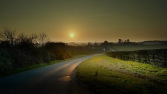 The road (Eric Goncalves (lots of catching up to do!!)) Tags: road trees sunset england sun color green nature grass reflections glow gloucestershire edge treescape sunsetting nikond7000 rememberthatmomentlevel1