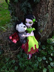 Draculillys new Friend (Suteki_Neko) Tags: friends garden doll bat ivy nici monsterhigh draculaura scarytails scarilyeverafter