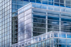 Trees in a Cube (giantmike) Tags: building glass architecture reflections bank madison wi hdr canonef100400mmf4556lis