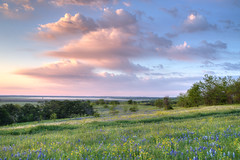 Ennis Texas Morning (Robert Frase) Tags: park morning flowers blue sunset sky usa tree clouds digital rural america sunrise canon landscape paint texas mark tx indian united iii scenic brush pasture 5d states ennis hdr bonnets 5diii 5dmiii