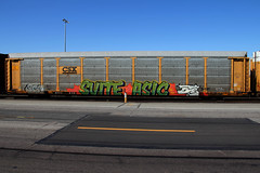 SUITE ASIC JABER (DCAN 1) Tags: railroad train suite graffit xtc freight wh autorack jaber asic xvc