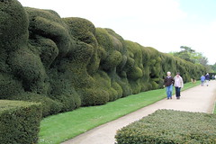Gorgeous Green Thursday - Wobbly Hedges (stepheneverettuk) Tags: uk england southwest canon somerset nationaltrust efs1785mmf456isusm yeovil ggt montacutehouse 60d gorgeousgreenthursday wobblyhedge