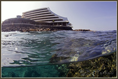 The Royal Kona Resort (bodiver) Tags: hawaii surf ambientlight wideangle fins kailua overunder