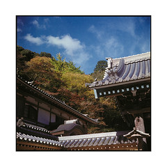 roofs  osaka, kansai  2015 (lem's) Tags: japan minolta temples osaka kansai japon toits autocord roffs