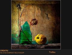 Sergio Tello Soler (Acci Fotogrfica de Ripollet) Tags: sergio tello
