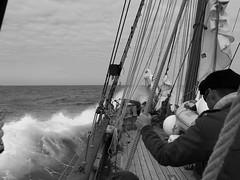 La Recouvrance (patrick_milan) Tags: boat ship bateau mer sea finistre bretagne recouvrance noiretblanc blackandwhite noir blanc monochrome nb bw black white brittany finistere plouguin saintpabu pabu ploudalmezeau france breiz