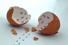 The Waiting is the Hardest part ... Now it's Showtime. (natus.) Tags: eggs waiting macro humor showtime food footsteps whitebackground shellseggs httpwwwimagekindcomartistsdonatus indoor