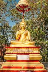 Buddha at Pattaya (magicallights) Tags: goldenbuddha golden buddha buddhisim buddhatemples religion architecture pattaya thailand wanderlust travel travellog vishnuavatar