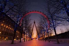 London Eye Sunset (aevo69) Tags: andy evans andyevanscreations london londoneye eye twilight tree capital fairy lights sunset leading lines golden glow warming