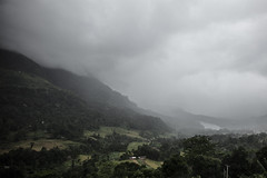 Horton Plains (151th) Tags: srilanka nature trees cloudy morning mood rain view mountains cold wet