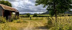 Partly sunny! HFF! (Photography by Julia Martin) Tags: photographybyjuliamartin fencefriday barn partlysunny britishsummertime