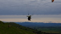 Johno coming in for a slope landing (overflow50) Tags: canberra paragliding paraglider spring springhill sky clouds