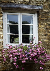 Austensibly Jane V: Impressions (chris.ph) Tags: window flowers texture stone building castlecombe england janeausten canon6d ef24105mmf4lisusm reflection pitcher