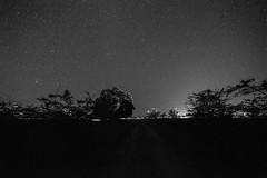 Voie lacte - Nouvelle Caldonie (alexandre_besse) Tags: nouvelle caledonie new caledonia noumea nature naturel paysage ciel nuit poselongue kon voie lacte arbre grain toile plante constellation observation