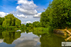 On The River (Rob Felton) Tags: river greatouse priorycountrypark countrypark bedford bedfordshire robertfelton felton tree trees reflection outdoor serene eos7d blended rayapro summer clouds