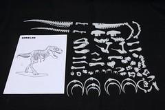 IMG_6859 (Barman76) Tags: bonelab trex tyrannosaur skeleton plastic laser cut