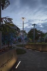SHIELDS STREET HEART, CAIRNS, QLD (WE-EF LIGHTING) Tags: queensland raylinc mall pedestrian plaza uplight rgbw park etc140gb ett160 ett150 cft540 tree street cairns inground uplights linear and area lighting signage wallwash