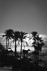 Spain 15 (1 of 1) (lindsayannecook) Tags: spain holida sunshine pool laugh fun swimming beach toddler