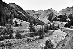 Villgratental/Austria (Kat-i) Tags: villgratental hochpustertal sterreich austria hohetauern berge mountains bach stream wiesen meadows bume trees blackandwhite schwarzweis monochrome nikon1v1 kati katharina 2016
