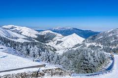 Harry_30848,,,,,,,,,,,,,,,,,,,,Hehuan Mountain,Taroko National Park,Snow,Winter (HarryTaiwan) Tags:                    hehuanmountain tarokonationalpark snow winter mountain     harryhuang   taiwan nikon d800 hgf78354ms35hinetnet adobergb