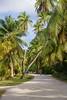DSC_2753b La Digue, Seychelles: Island Living (wanderlust  traveler) Tags: ocean africa blue sea panorama nature landscape island rocks paradise palmtree tropical seychelles ladigue torquoise