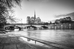 Notre-Dame Reflection (Julien Fromentin - Photographe) Tags: world city bridge light urban paris france reflection art history church monument seine architecture photoshop french effects photography town photo nikon europe exposure flickr raw shot capital notredame full cathdrale frame pont capitale fullframe nikkor bateau pniche f28 hdr ville parisian francais citt d800 lightroom effets 2470mm parisien photomatix 24x36 2013 fromentin fromus colocacin cuida traitements fromus75