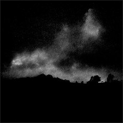 A Lonely Diner (Olli Keklinen) Tags: bw horse silhouette photoshop dark square landscape nikon scenery d300 500x500 2013 ok6 ollik 20130220 work3443