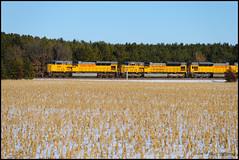MPRSS at Grand Marsh, WI (Philip_Martin) Tags: trees snow field pine wisconsin corn adams grand line marsh wi sd9043mac sd90 mprss