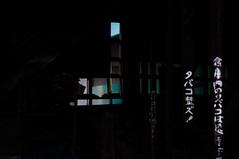 _DSC1775 (Kohji Iida) Tags: street bicycle silhouette japan photography 50mm nikon bokeh gear 18 hang kohji tsuchiura ibaraki noire iida d90