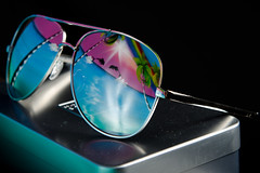 Dolphin Vision (Bob Welch) Tags: pink reflection water glasses jump dolphin