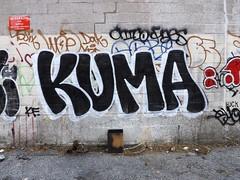 Kuma (monolaps) Tags: