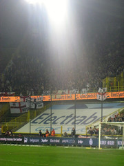 Toon Army In Bruges (fergi19) Tags: club newcastle army europa united brugge toon league