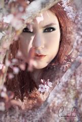 Fille des fleurs_II (Cristina.ps) Tags: flores chica retrato fantasia campo pelirroja efecto
