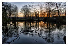 Ombres et lumires (akimoss) Tags: nature couleurs normandie campagne reflets escoville lumires matin tang hivers ombes