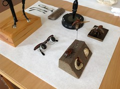 Artifacts from the former Danish Blind History Museum (DPantalony) Tags: museum denmark glasses blind touch insects bugs artifacts tactile pedagogy medicalmuseion