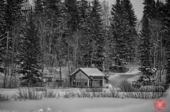 Wilderness tamed (Kasia Sokulska (KasiaBasic)) Tags: winter sunset lake snow canada building nature beauty nationalpark alberta elkisland astotin