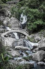 Wuzhishan_20121205_612