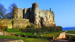 Laugharne Castle Wales #dailyshoot (Leshaines123) Tags: colour castle wales contrast flickr explore dylanthomas facebook laugharne 2013 dailyshoot anawesomeshot tumblr dazzlingshot vividandstriking me2youphotographylevel1 leshaines