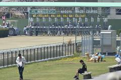 20130405-_DSC5006 (Fomal Haut) Tags: horse japan nikon nagoya 80400mm d4   14teleconverter  d800e