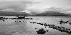 Glenn Luss from Arrochymore (Marc de Ridder) Tags: scotland nationalpark lochlomond westhighlandway balmaha lochlomondnationalpark millarochy arrochymore