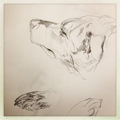 "#sleepy #puppy #dog #sketch • <a style=""font-size:0.8em;"" href=""https://www.flickr.com/photos/61640076@N04/8631964918/"" target=""_blank"">View on Flickr</a>"