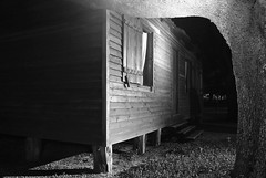and then I went out looking (cskazmer) Tags: bw house tree night empty houston nikon1j1 cskazmer