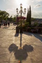 Hidden Mickey Shadow [Explored 4/10/13 #481] (Kevin-Davis-Photography) Tags: world flower festival garden epcot disney mickey hidden walt 2013