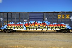 None & Naro (Sk8hamburger) Tags: railroad art train painting graffiti paint none tag rr boxcar graff piece tagging freight csx endtoend naro e2e paint knrs spray