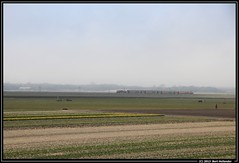 20130314 DDAR in zijn laatste lente, Limmen (Bert Hollander) Tags: spring ns met geel serie cas trein stam 1700 limmen ddar locomotief 1715 eloc 7435 bert13 3457ichwdbv