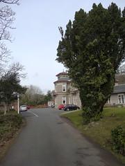 Haylie House (Bricheno) Tags: house scotland escocia szkocja schottland ayrshire largs scozia haylie écosse 蘇格蘭 escòcia carehome σκωτία स्कॉटलैंड bricheno scoția hayliehouse